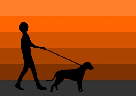 mannhundfeld